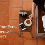 ワードプレス人気記事ランキングプラグイン【Popular Posts】の導入設定方法