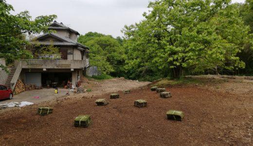 子育てや教育に役立つDIY!子供と一緒に芝生を植える方法や手入れの仕方